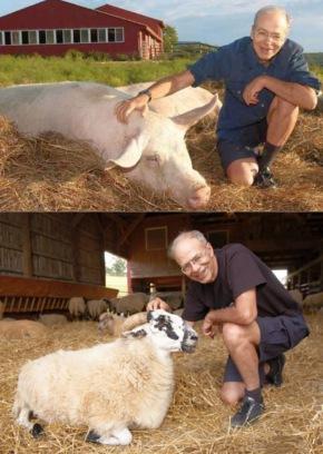 Peter Singer adora animais...
