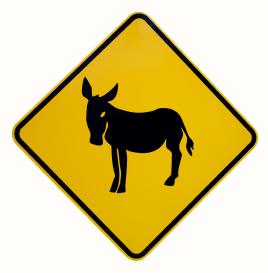 atenção ao burro