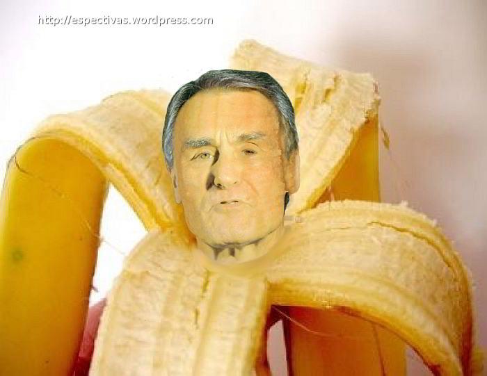 cavaco bananacopy web