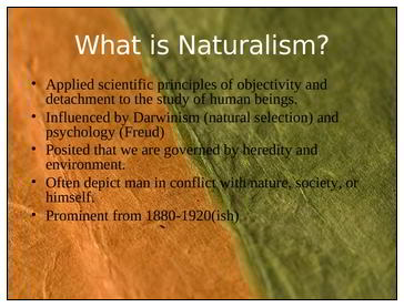 naturalismo web