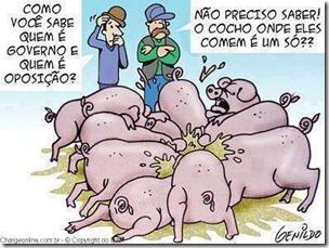 os porcos da política web