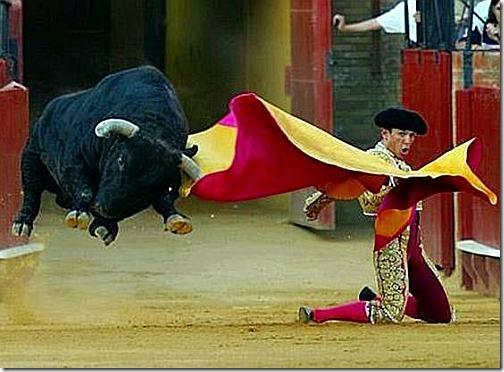 toureiro