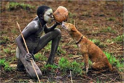 dog-africa