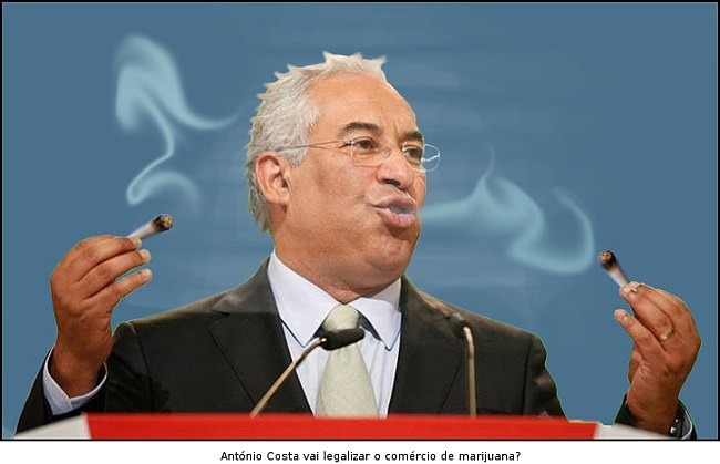 antonio costa marijuana web