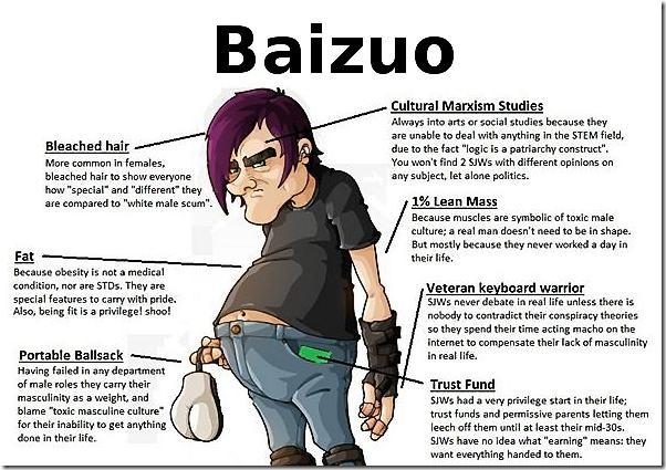 baizuo-web