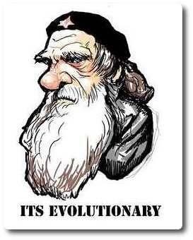 naturalismo_darwin
