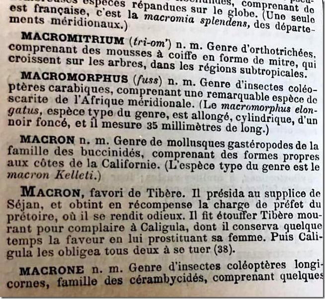 macron-dic-web