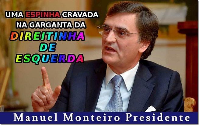 manuel-monteiro-presidente-web-650