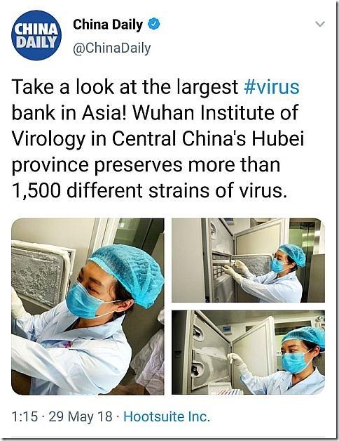 china coronavirus web