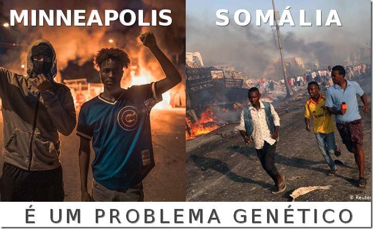 PROBLEMA-GENETICO-WEB