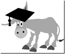 burro-doutorado-web